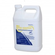 BBJ Mold Control for Floors and Walls