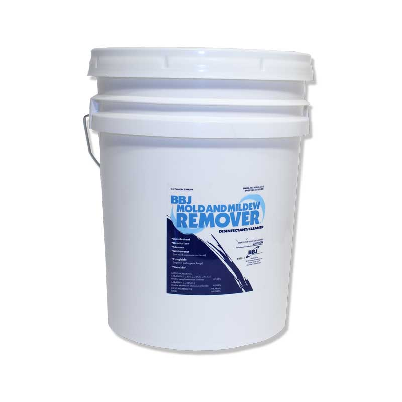 Image Result For Killing Mold On Walls